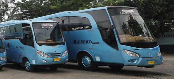 Bus Trans Bintaro Big Bird