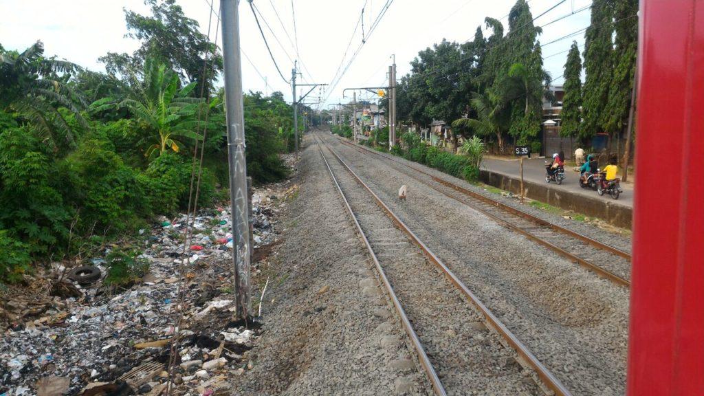 TASPAT Greenline Peninggian Rel